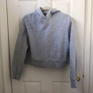 Zara gray cropped hoodie